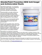 WonderPaint Preventex-HDW Anti-fungal and Antimicrobial Mastic