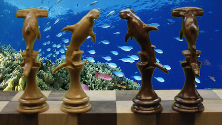 Hammerhead shark king completes 10th anniversary chess set